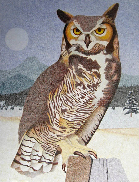 Evergreen Trees Drawing - Great Horned Owl by Dan Miller