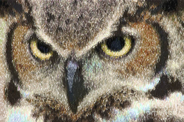 Digital Art - Great Horned Owl In Colored Pencil by Jill Lang