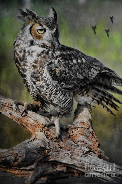 Great Horned Owl On Branch Art Print