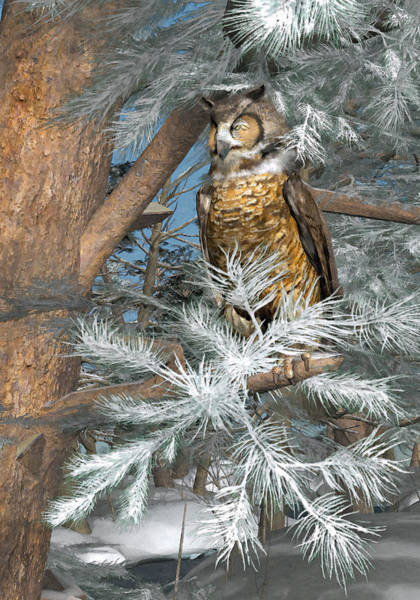 Pine Needles Painting - Great Horned Owl by Peter J Sucy