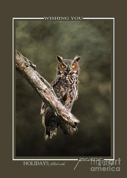 Photograph - Great Horned Owl Wildlife Christmas Cards by Jai Johnson