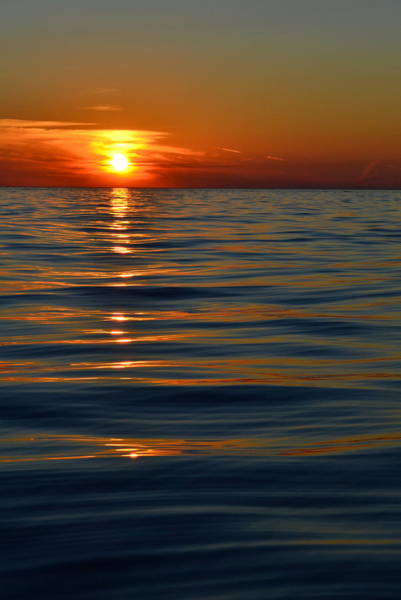 Photograph - Great Lake Sunset by Michelle Calkins