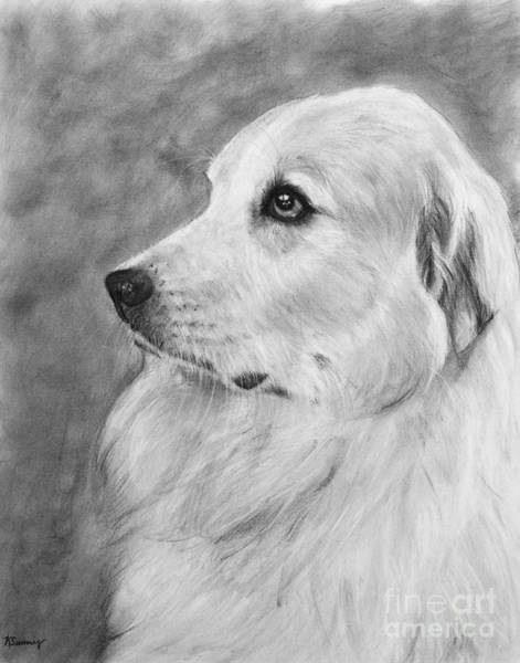 Art Print featuring the drawing Great Pyrenees In Profile Drawing by Kate Sumners