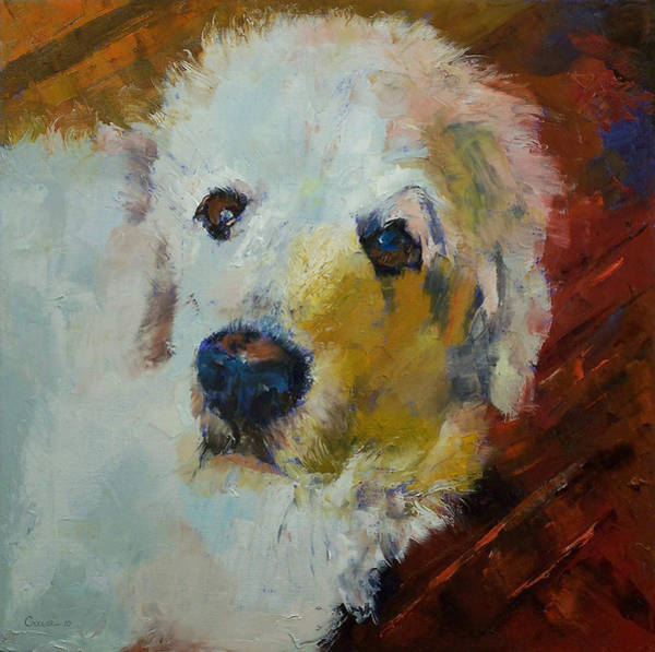 Hund Wall Art - Painting - Great Pyrenees by Michael Creese