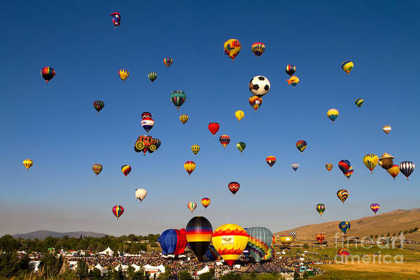 Photograph - Great Reno Balloon Race by Steven Frame