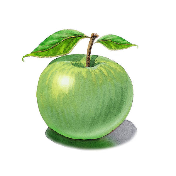 Painting - Green Apple Still Life by Irina Sztukowski