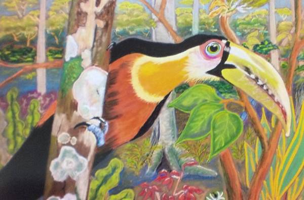 Wall Art - Pastel - Green-billed Toucan by Kim Lagana