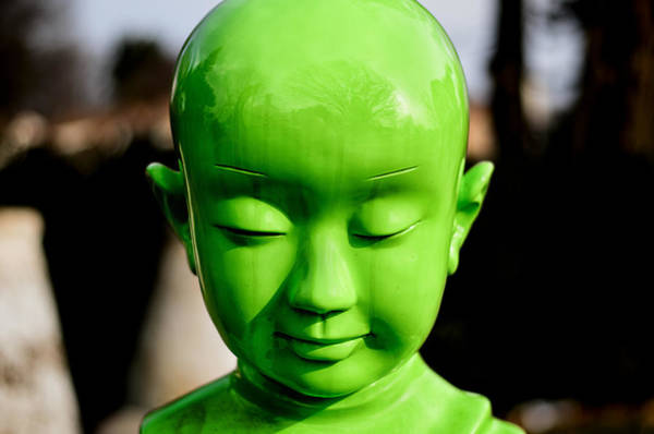 Photograph - Green Buddha by Steve Stanger