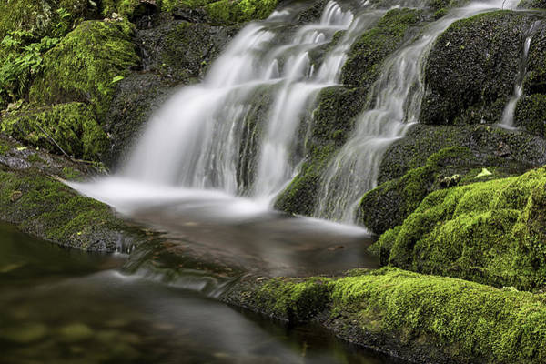 Photograph - Green Cascade by Sara Hudock