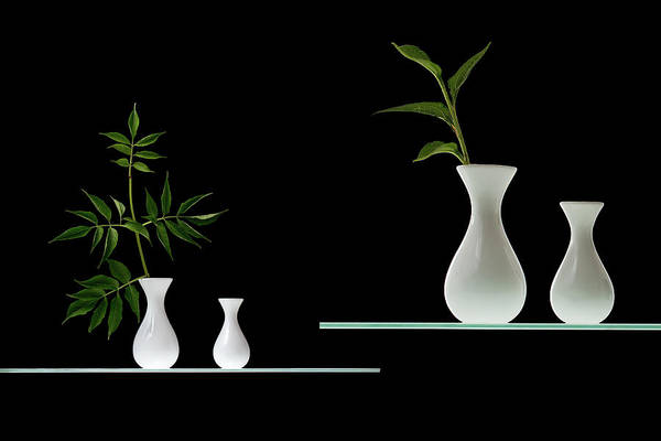 Vases Photograph - Green by Doris Reindl