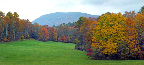 Photograph - Green Field In The Fall by Duane McCullough
