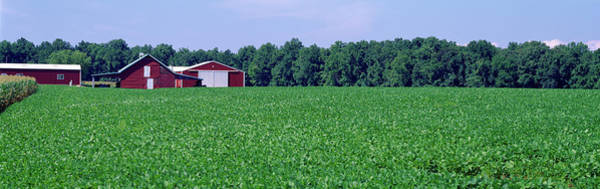 Wall Art - Photograph - Green Field With Barn by Panoramic Images