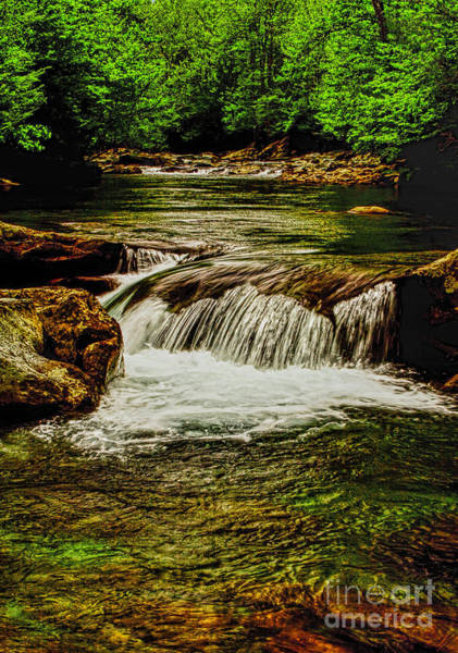 Photograph - Green Flow by Dave Bosse