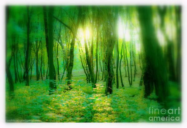 Galicia Photograph - Green Galicia.poland.tom Jones - Green Green Grass Of Home. by  Andrzej Goszcz