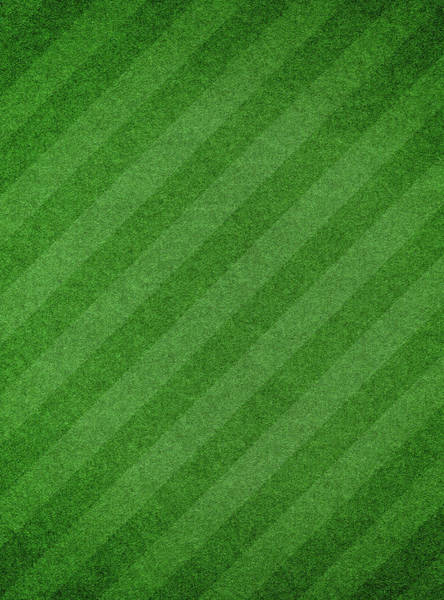 Photograph - Green Grass Textured Background With by Hudiemm