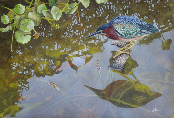 Painting - Green Heron IIi by Greg and Linda Halom