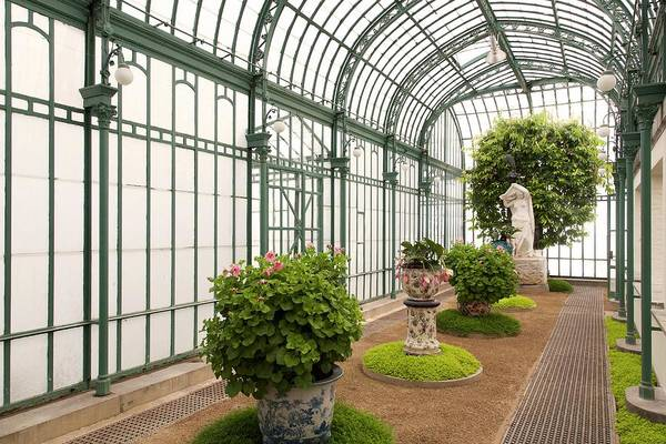 Glasshouse Photograph - Green House by Ton Kinsbergen/science Photo Library
