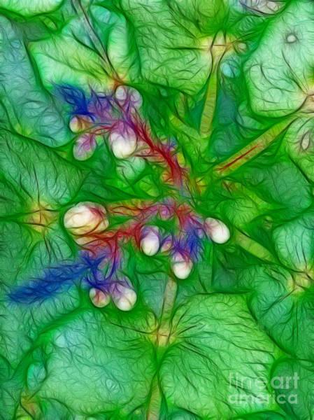 Photograph - Green Illusion by Eva-Maria Di Bella