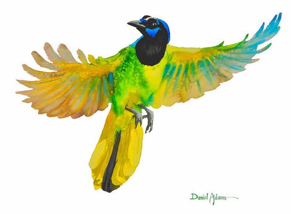 Painting -  Da175 Green Jay By Daniel Adams by Daniel Adams