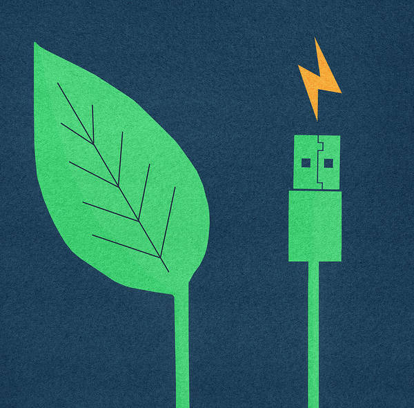 Wall Art - Photograph - Green Leaf Next To Electric Usb Cable by Ikon Ikon Images