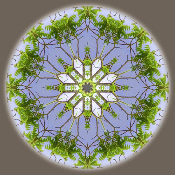 Digital Art - Green Leaves Mandala by Beth Sawickie