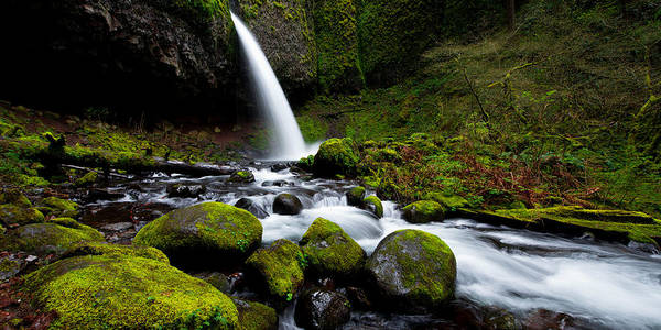 Pacific Northwest Photograph - Green Mile by Chad Dutson