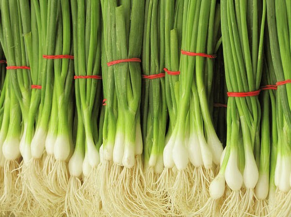 Scallion Photograph - Green Onions by Francois Dion