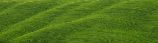 Photograph - Green Panorama by Ivan Slosar