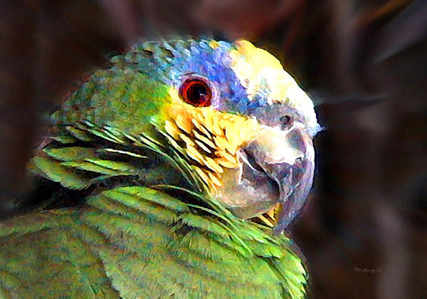 Photograph - Green Parrot by Duane McCullough