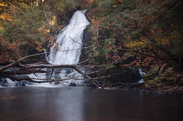 Photograph - Green Peak Falls by Margaret Pitcher