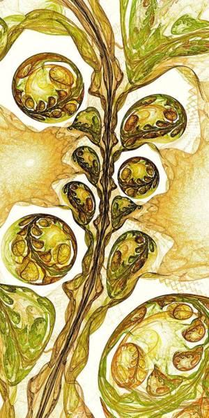 Digital Art - Green Plant by Anastasiya Malakhova