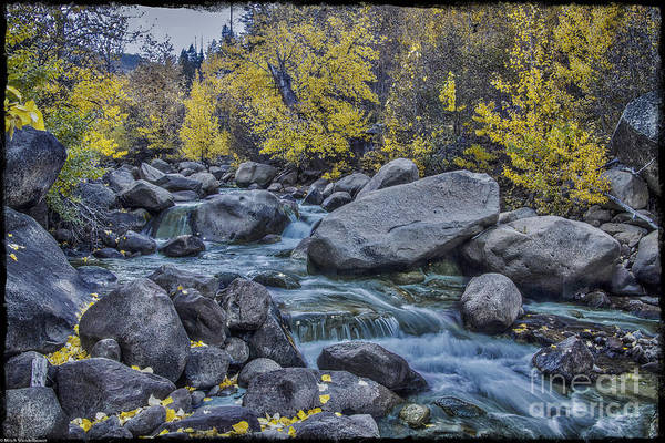 Green And Gray Photograph - Green River by Mitch Shindelbower