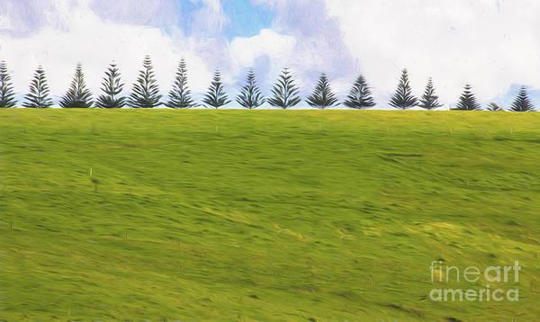 Wall Art - Photograph - Green by Sheila Smart Fine Art Photography