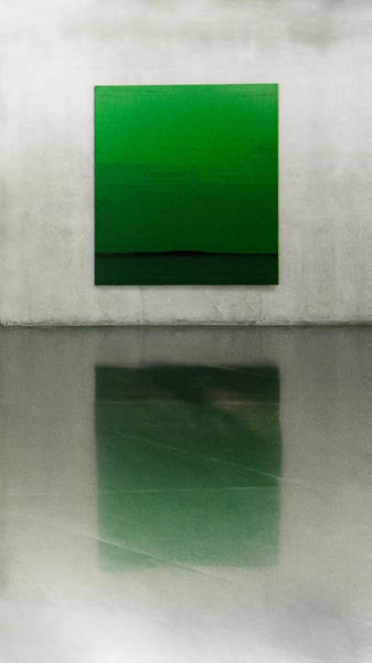 Museum Photograph - Green by Toni Guerra