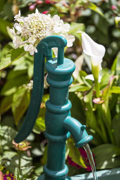 Wall Art - Photograph - Green Water Pump by Garry Gay