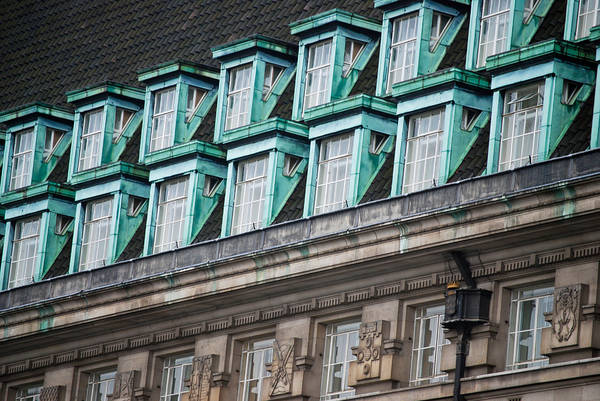 Photograph - Green Windows by Christi Kraft