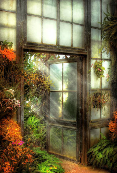 Photograph - Greenhouse - The Door To Paradise by Mike Savad
