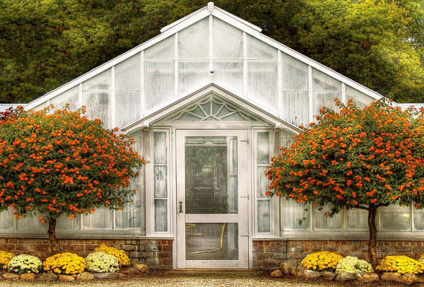 Photograph - Greenhouse - The Green House Door by Mike Savad