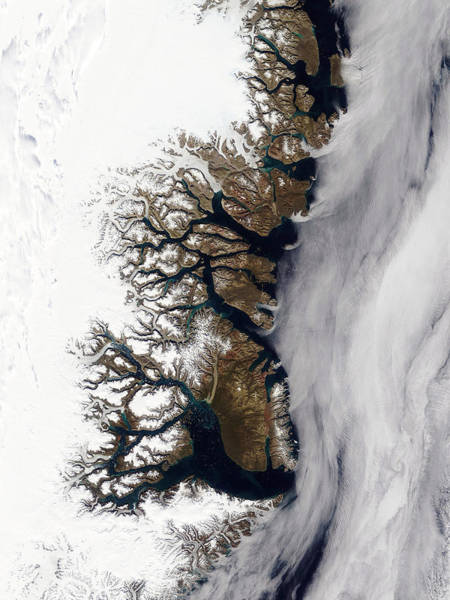 Photograph - Greenlands Eastern Coast From Space by Celestial Images