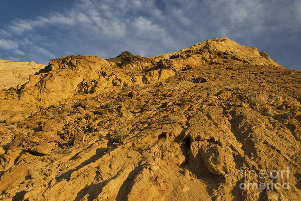 Photograph - Greenwater Range by Dan Suzio