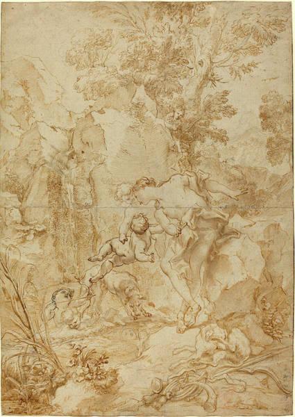 Black Narcissus Drawing - Gregorio De Ferrari, Italian 1644-1726 by Litz Collection