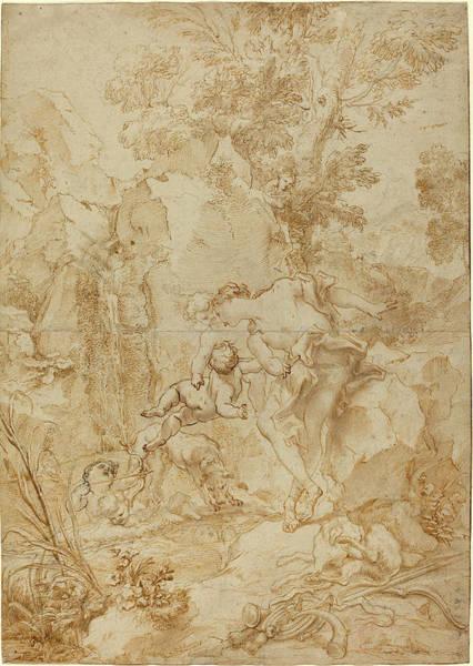 Black Narcissus Drawing - Gregorio De Ferrari Italian, 1644 - 1726 by Quint Lox
