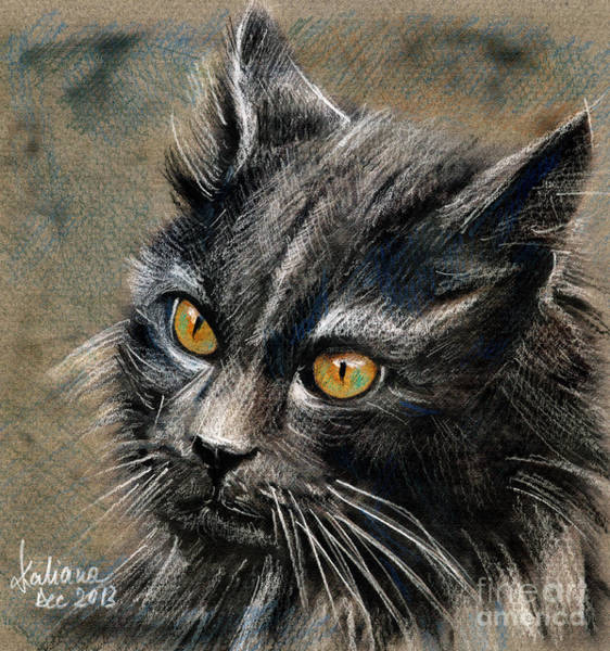 Drawing - Grey Cat With Yellow Eyes Drawing by Daliana Pacuraru