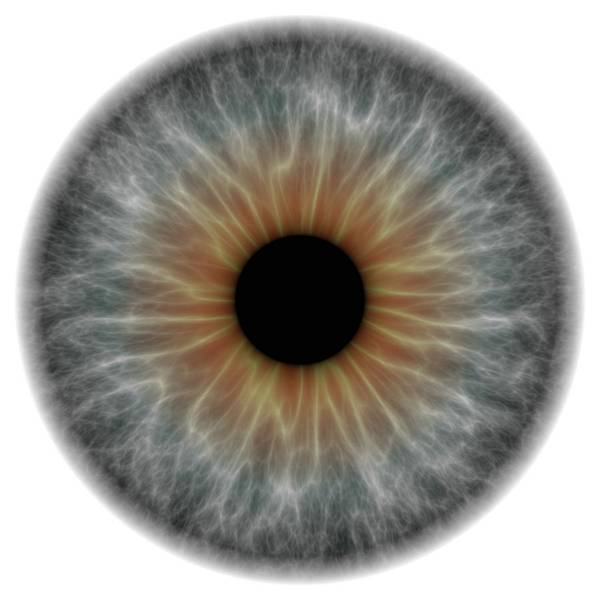 Wall Art - Photograph - Grey Eye by Alfred Pasieka/science Photo Library