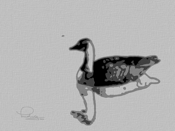 Photograph - Grey Goose by Ludwig Keck