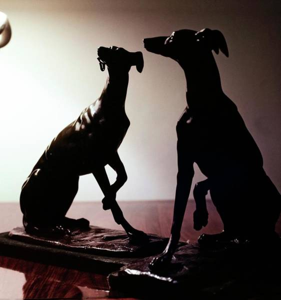 Wall Art - Photograph - Greyhound Ornaments by Horst P. Horst