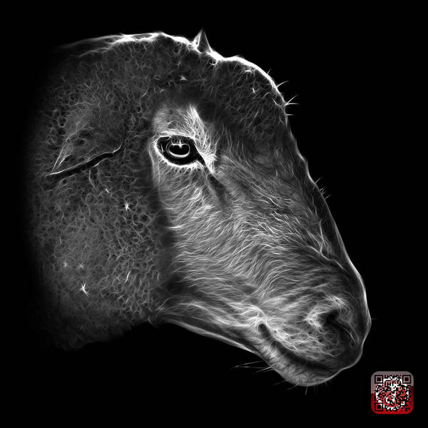 Digital Art - Greyscale Polled Dorset Sheep - 1643 F by James Ahn
