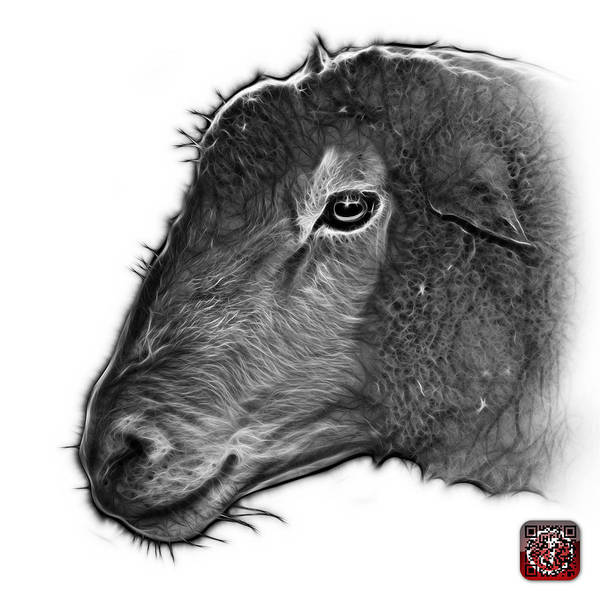 Digital Art - Greyscale Polled Dorset Sheep - 1643 Fs by James Ahn