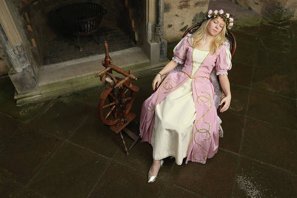 Evening Wear Photograph - Grimms Fairy Tales 200th Anniversary by Sean Gallup