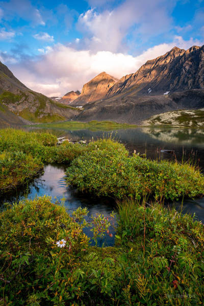 Photograph - Grizzly Bear Lake At Dusk by Tim Newton